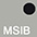 MSIB Серебряный / Чёрный